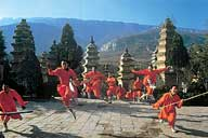 Shaolin Wheel Of Life Monks scatter