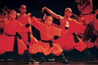 Shaolin Wheel Of Life Stage Prologue - group